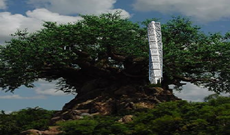dům na stromě (vytvořila Kika44)