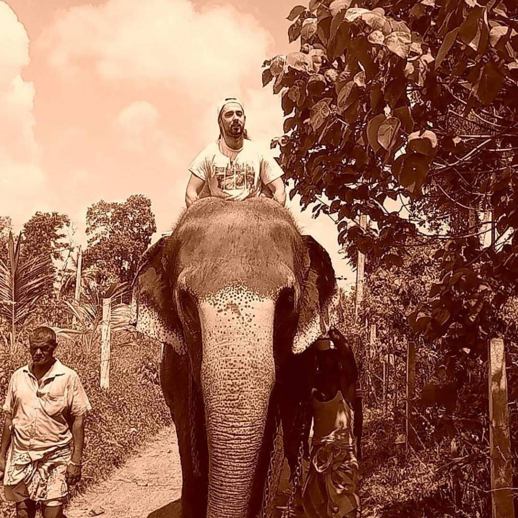 fotka se slonem